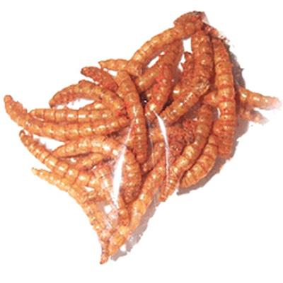 Click to get Delicious Larvets Real Larvae Snacks