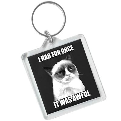 Click to get Grumpy Cat Keychain  I Had Fun Once